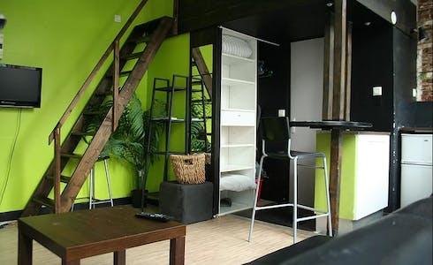 Studio for rent from 19 Jan 2018 (Rue Barthélémy Delespaul, Lille)