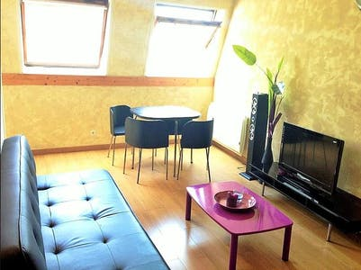 Apartment for rent from 21 Jan 2019 (Rue des Arts, Lille)