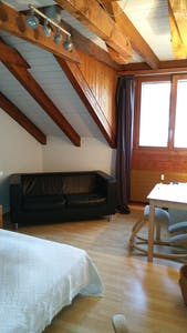 Room for rent from 01 Jul 2018 till 30 Sep 2018 (Seidenweg, Bern)