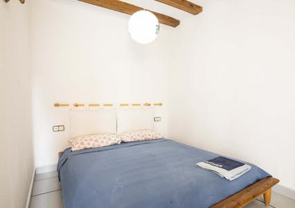 Room for rent from 01 Jul 2019 (Carrer de Sant Ramon, Barcelona)