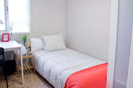 Private room for rent from 20 Aug 2019 (Carrer del Doctor Vicente Pallarés, Valencia)