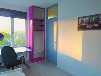 Private room for rent from 10 Aug 2019 (Van der Helmstraat, Rotterdam)