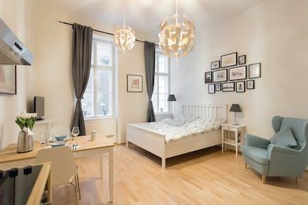 Wohnung zur Miete ab 01 Mai 2020 (Schubertgasse, Vienna)
