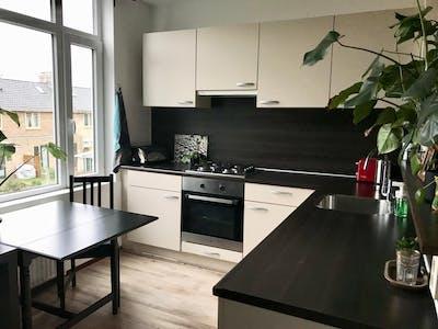 Apartment for rent from 01 Jan 2019 (Strevelsweg, Rotterdam)