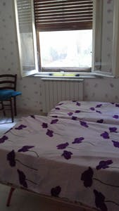 Room for rent from 17 Jul 2018 (Via Martiri, Pisa)