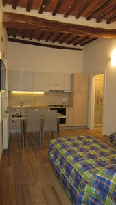 Apartment for rent from 01 Aug 2018 (Via Vallerozzi, Siena)