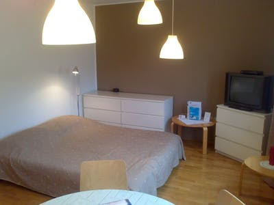 Apartment for rent from 01 Oct 2020 (Dalmatinova ulica, Ljubljana)