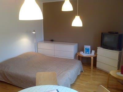 Apartamento para alugar desde 15 fev 2019 (Dalmatinova ulica, Ljubljana)