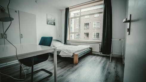 Private room for rent from 01 Sep 2020 (Goudsewagenstraat, Rotterdam)