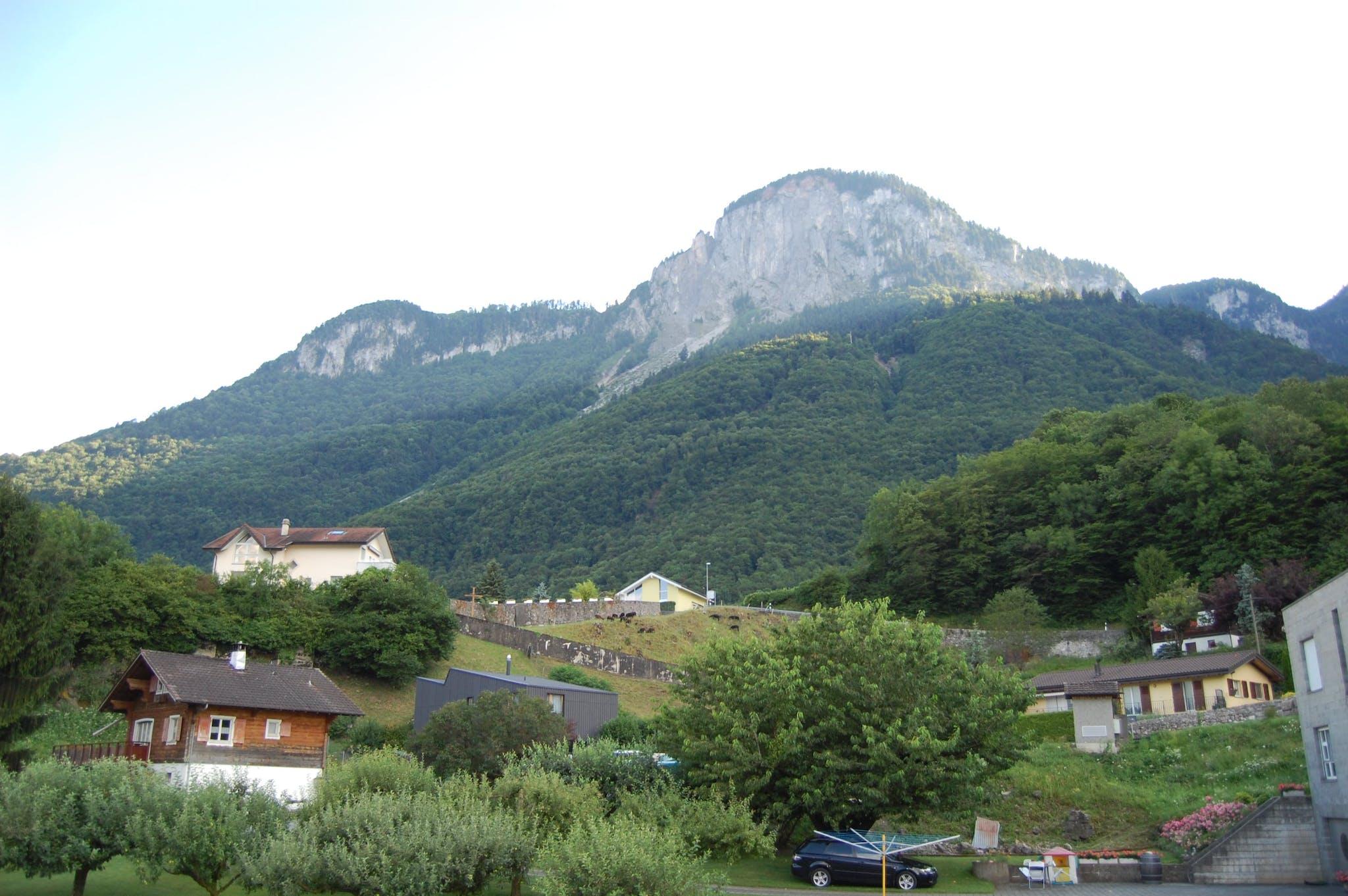 Chemin Neuf