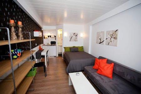 Studio for rent from 21 Jan 2019 (Njálsgata, Reykjavík)