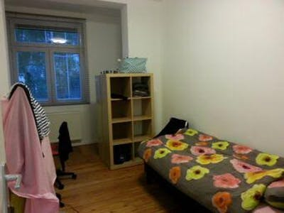 Private room for rent from 16 Jun 2019 (Rue de la Procession, Anderlecht)