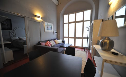 Apartment for rent from 01 Dec 2017  (Lungarno Amerigo Vespucci, Florence)