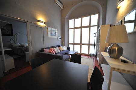 Apartment for rent from 30 Dec 2018 (Lungarno Amerigo Vespucci, Florence)