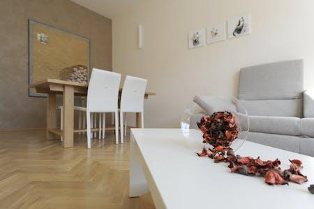 Apartment for rent from 07 Jan 2020 (Radetzkystraße, Vienna)