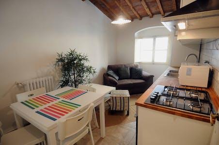 Appartement à partir du 01 Jun 2020 (Lungarno Amerigo Vespucci, Florence)