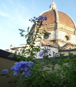 Apartment for rent from 31 Aug 2020 (Via Ricasoli, Florence)