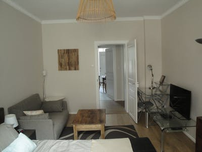 Apartment for rent from 01 Feb 2018 till 31 Jul 2018 (Rue de l'Aimant, Strasbourg)
