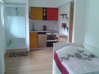 单间公寓租从13 10月 2017  (Avenue Jean de Bologne, Brussels)