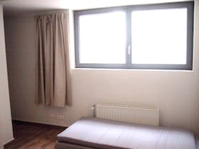 Room for rent from 31 Jan 2019 (Antoine Dansaertstraat, Brussels)