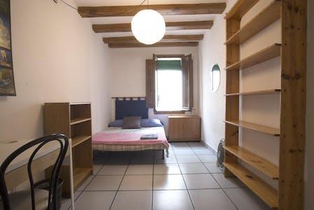 WG-Zimmer zur Miete ab 19 Feb. 2020 (Carrer de Sant Ramon, Barcelona)