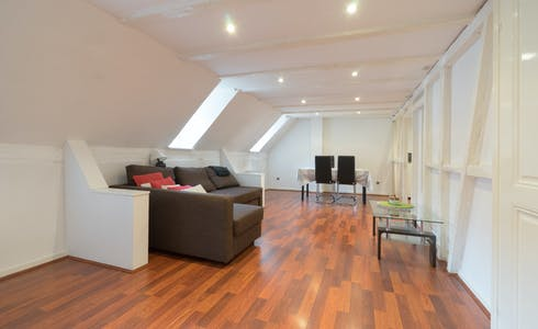 Apartment for rent from 22 Apr 2018 (Grand'Rue, Strasbourg)