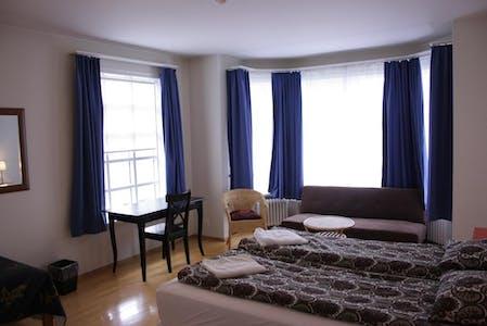 Private room for rent from 01 Apr 2020 (Tjarnargata, Reykjavík)