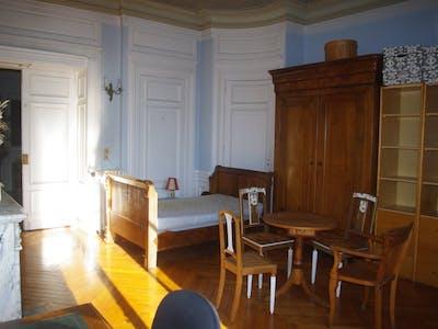 Privé kamer te huur vanaf 21 jan. 2019 (Place Hôtel de ville, Saint-Étienne)
