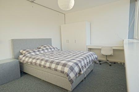 Apartment for rent from 01 Feb 2020 (Groeneweg, Utrecht)