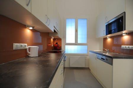 Apartment for rent from 18 Oct 2017  (Pfefferhofgasse, Vienna)