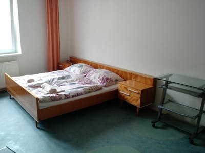 Room for rent from 01 Feb 2019 (Gudrunstraße, Vienna)