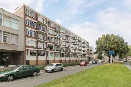 合租房间租从01 12月 2017  (Vondelweg, Rotterdam)