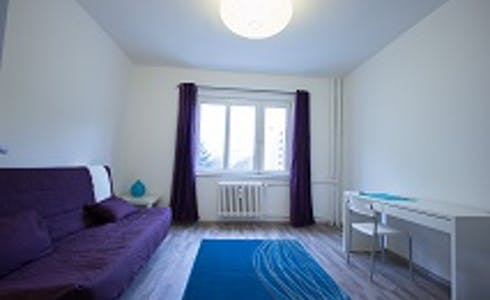Room for rent from 29 Dec 2017  (Eisenacher Straße, Berlin)