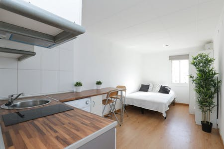 Appartement te huur vanaf 31 Mar 2020 (Carrer de Sant Bartomeu, Barcelona)