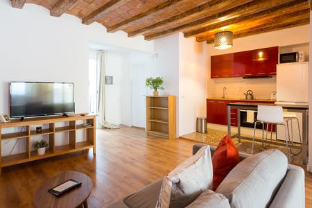 Apartment for rent from 01 Feb 2019 (Carrer de Guifré, Barcelona)