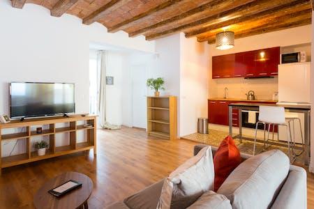 Wohnung zur Miete ab 04 Apr. 2020 (Carrer de Guifré, Barcelona)