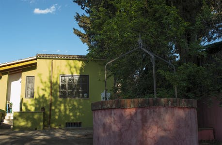 Private room for rent from 21 May 2019 (Via degli Arvali, Roma)