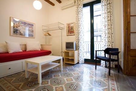 Apartamento para alugar desde 19 Jun 2019 (Carrer de Joaquín Costa, Barcelona)