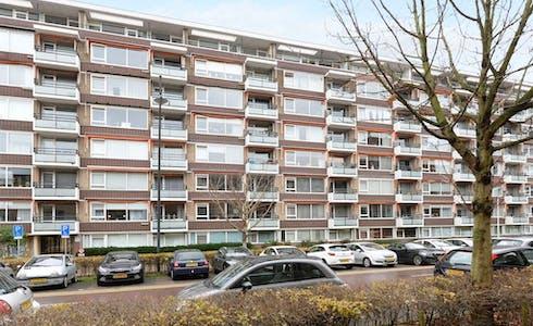 Appartement à partir du 01 mars 2018 (Steenvoordelaan, Rijswijk)