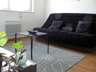 Apartment for rent from 01 Aug 2019 (Rue du Lazaret, Strasbourg)