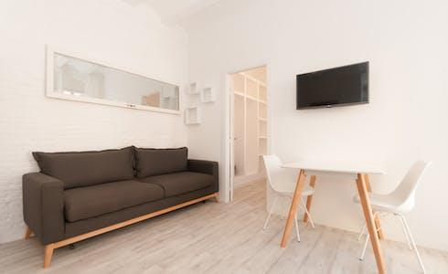 Apartment for rent from 31 Jan 2018 (Carrer de Sant Miquel, Barcelona)