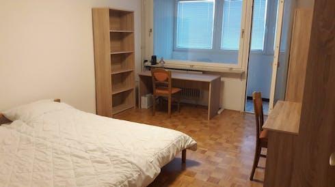 Stanza privata in affitto a partire dal 15 feb 2019 (Tržaška cesta, Ljubljana)