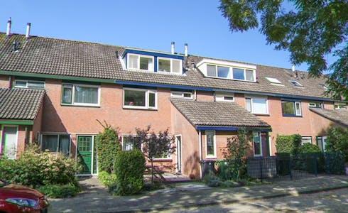 Habitación de alquiler desde 17 ago. 2018 (Bosbes, Rotterdam)