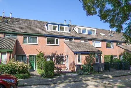 Room for rent from 17 Aug 2018 (Bosbes, Rotterdam)