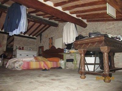 Chambre privée à partir du 23 Jul 2019 (Via Silvio Luschi, Pisa)