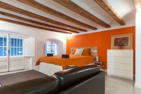 Appartement à partir du 20 juil. 2020 (Carrer dels Tallers, Barcelona)