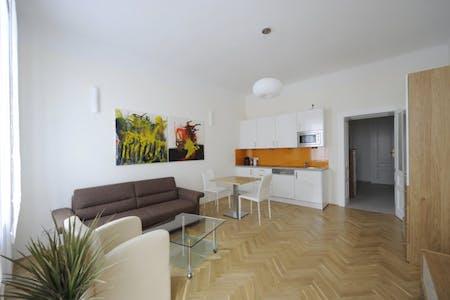 Appartamento in affitto a partire dal 12 Dec 2019 (Hollgasse, Vienna)