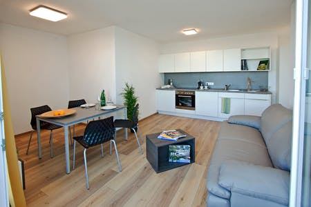 Apartment for rent from 23 Jan 2019 (Kaisermühlenstraße, Vienna)