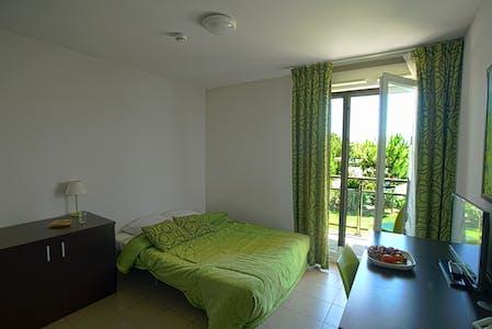 Appartamento in affitto a partire dal 26 feb 2020 (Rue Marcel Demonque, Avignon)