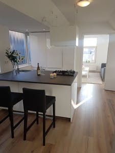 Apartment for rent from 22 Apr 2020 (Grote Visserijstraat, Rotterdam)